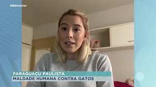 Paraguaçu Paulista: polícia investiga mortes de gatos por envenenamento