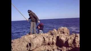 Carnarvon Australia  City new picture : CARNARVON / AUSTRALIA SPANISH FISHING