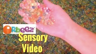 Enjoy this calming finger family color finger sensory video with nursery rhymes and a bathtub full of Orbeez perfect for toddlers, infant, babies and pre0schoolers learning video. Great to watch before nap time and bedtime. Very calming. Children will be mesmerized by the swirling orbeez. We love playing with a bathtub full of Orbeez.Also check out our ABC learning alphabet video with orbeez: https://www.youtube.com/watch?v=0BJK7f8hadoDon't forget to subscribe to our channel (It's out of this world fun!) to catch all our fun toy unboxing, blind bag, mystery surprise eggs, chocolate surprise eggs, toy playing, science experiments, family travel and DIY! Our channel is perfect for infants, babies, toddlers, preschoolers, school-age children and up: https://www.youtube.com/channel/UC4Cc...Check out some of our other out of this world fun videos!Melissa and Doug Mickey Mouse Pizza Party and Birthday Cake unboxing playtime video: https://www.youtube.com/watch?v=JWK92NgjI2UFrozen glitter gliders, Frozen manicure set and blind bags galore!https://www.youtube.com/watch?v=4YH1KWkLtuQShopkins Memory Game with Shopkin Blind Bags!https://www.youtube.com/watch?v=HpIzvLaEwN0Frozen Mystery Surprise time-lapse Puzzle! Featuring Olaf, Princess Anna, Queen Elsa: https://www.youtube.com/watch?v=dUTvn0pRFicLearn shapes and colors with play-doh perfect for babies, toddlers, children and pre-schoolers https://www.youtube.com/watch?v=zfTRSw6hzfICute Minnie Mouse and Daisy Duck puzzle time-lapse video: https://www.youtube.com/watch?v=Q7SATcxlZsYMystery Surprise Play Doh Ice Cream Cones featuring Shopkins!https://www.youtube.com/watch?v=3tzsNBHXtrYGiant Play-doh Mystery Surprise Olaf Egg!!! https://www.youtube.com/watch?v=_cf5IlfIy9cMy Little Pony Memory Game with MLP Blind Bags, Fashems, and squishy pops! https://www.youtube.com/watch?v=YLoDYwyegkEPlay-doh mystery surprise cups with palace pets, My little Pony, MLP, and more!https://www.youtube.com/watch?v=e_4EP...Frozen mystery surprise puzzle time-lapse video! Princess Anna and Queen Elsa see what it looks like at the end! https://www.youtube.com/watch?v=hDsb4...Play-doh swirl and scoop ice cream kit unboxing video! We unbox the new ice cream play-doh set with our little friends! https://www.youtube.com/watch?v=082XB...Learn your colors infant, toddler, baby, preschool video with M&Ms, Frozen, Elsa, Star Wars and Minions! Such a fun video! https://www.youtube.com/watch?v=lLuZk...Giant Surprise Easter Basket! Come open these surprise mystery easter eggs and chocolate surprise eggs with us! MLP, Pet Patrol, My Little Pony, Frozen, Olaf and Pez! https://www.youtube.com/watch?v=5pLAL...Time-lapse MLP My Little Pony Surprise Puzzle: https://www.youtube.com/watch?v=kHDO3...time-lapse ice-cream melting with shopkins hidden surprise! https://www.youtube.com/watch?v=juhsI...Star Wars nesting dolls! See the fun nesting dolls stack and the surprises and blind bags that are inside: https://www.youtube.com/watch?v=Kph-x...Batman v Superman mystery minis unboxing: https://www.youtube.com/watch?v=0jSPw...Who doesn't LOVE play-doh surprise eggs with Lalaoopsy, Littlest Pet Shop, Shopkins, Doc McStuffins, Hot Wheels and more! https://www.youtube.com/watch?v=wjBwq...cute 6 year old playing and reviewing Hello Kitty Airplane: https://www.youtube.com/watch?v=8toRf...Unboxing Hello Kitty Airplane: https://www.youtube.com/watch?v=pxqxC...Surprise eggs with blind packs that include: Sofia the First, My little pony squishy pops, Hello Kitty, Lalaloopsie, palace pets, and more: https://www.youtube.com/watch?v=pxqxC...Chocolate surprise eggs galore!!!!! Minions, Avengers, Star Wars and Frozen Queen Elsa and Princess Anna and Olaf: https://www.youtube.com/watch?v=Pa-fS...Here are the links to our playlists:Hello Kitty blind bags, unboxing, chocolate surprise eggs: https://www.youtube.com/playlist?list...All things toys unboxing and toy reviews: https://www.youtube.com/playlist?list...My little pony, Hello Kitty, Palace Pets, Littlest Pet shop, Frozen, play-doh surprise eggs blind bags playlist: https://www.youtube.com/playlist?list...Play-Doh playlist: https://www.youtube.com/playlist?list...