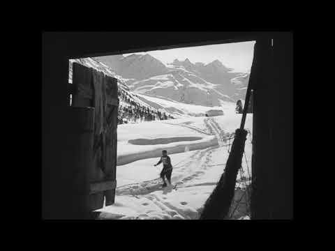 The White Stadium - Trailer