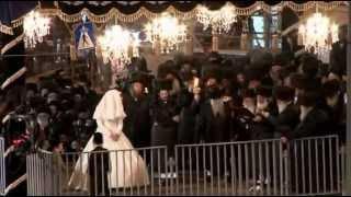 החתונה של בעלזא: וידאו מהחופה