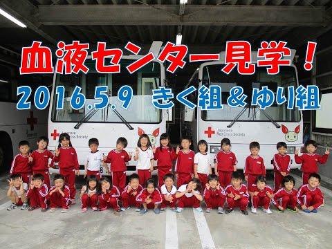福井県赤十字血液センターを見学!きく組&ゆり組(年長&年中)2016年5月 勉強になりました。