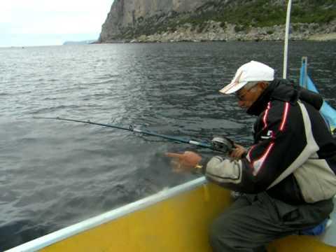 как ловить катрана на черном море видео