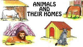 Homes of animals science project