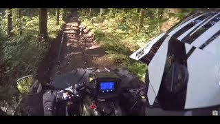 10. Polaris Sportsman 570 exploring the forest - (Part 1)