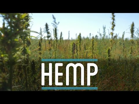 Hemp | How To Make Everything: Suit (1/10)