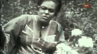 ETV Oldies, Ethiopian Oldies, AllComTV.com, ETV Live, Ethiopiaan TV -- Part 2