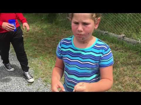 女孩比出特殊手勢 惹狒狒大怒竟向外拋…