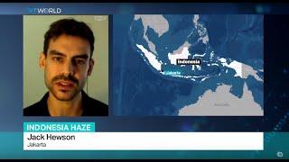 Video Indonesia Haze: Interview with Jack Hewson MP3, 3GP, MP4, WEBM, AVI, FLV Oktober 2017