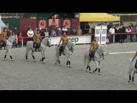 Karusszel az Epona Spanyol Lovasiskola lovasaival