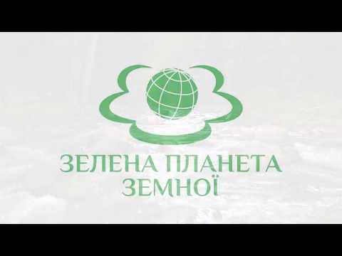 Библиотека: Несподівана зустріч в Карпатах