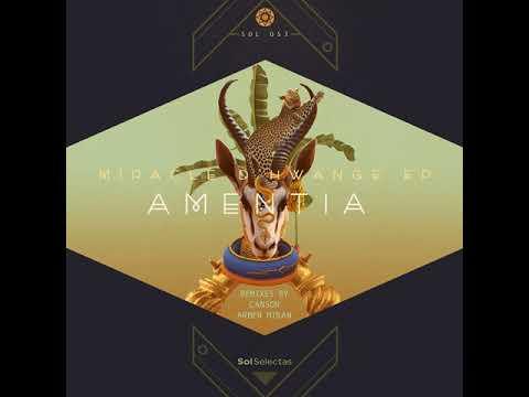Amentia - Miracle d'Hwange (Original Mix)