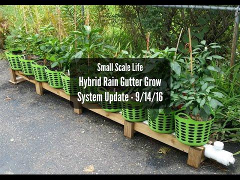 Rain Gutter Aquaponics System on Grow Aquaponically