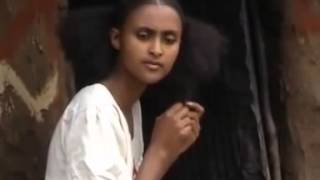 Gual Hagereseb Tigrigna Music Ethiopia