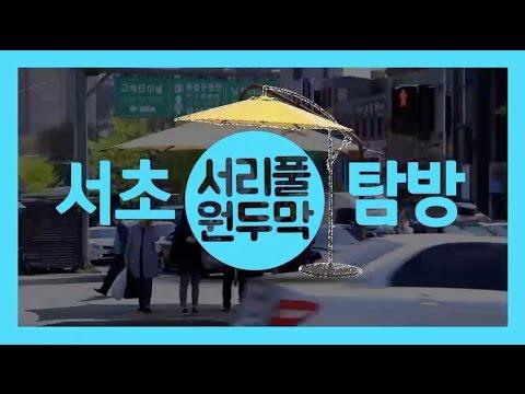 서초탐방 - 태양을 피하는 방법 '서리풀원두막'