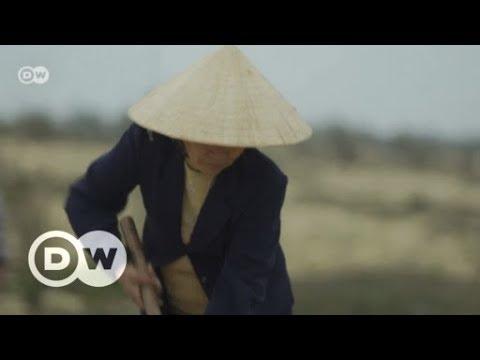 Wetterextreme in Vietnam nehmen zu | DW Deutsch