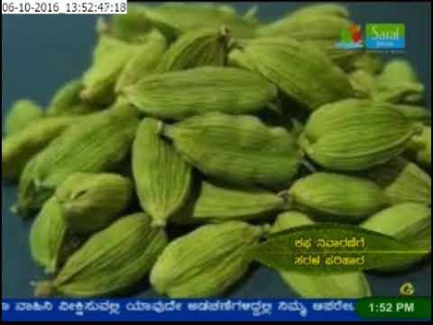Ayurveda Mane Maddu - Kafa & kemmu - Mobile: 80500 10100