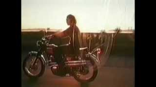 Kult-Clip von Creedence Clearwater Revival