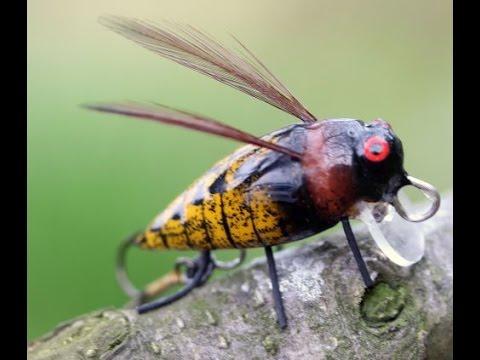 Stepanow Big Insects bogarak videó