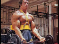 Arnold Schwarzenegger Prank Call