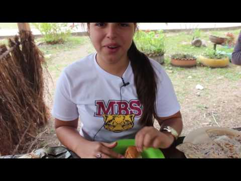 3 Food  Honduras