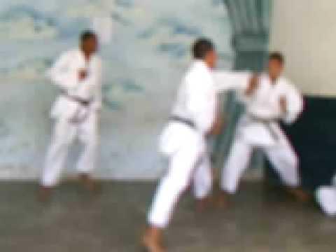 Kumite vs Taijutsu / 空手対忍術