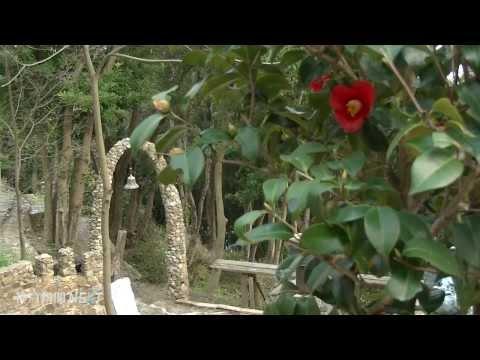 自然織りなす芸術空間 アート山 大石可久也美術館