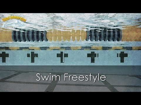 swimming - Improve your stroke efficiency while gaining more enjoyment in your swimming by taking a Total Immersion Swimming workshop. Workshops are offered across the ...