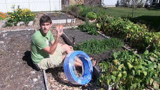 DIY Low Tunnel For Raised Beds Under $50 - Grow ALL YEAR!