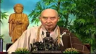 Kinh Vô Luợng Thọ (1998) tập 93&94  - Pháp sư Tịnh Không