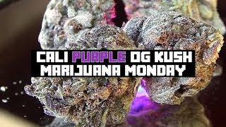 MARIJUANA MONDAY Cali Purple OG MMJ Canada by Urban Grower