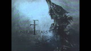 Download Lagu Funeral Tears - For You Mp3