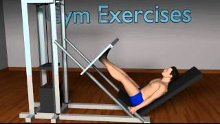 Gym Exercises YouTube video