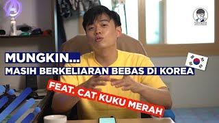 """Video Pelaku yang menandai korbannya dengan 💅""""CAT KUKU""""💅 MP3, 3GP, MP4, WEBM, AVI, FLV Juni 2019"""