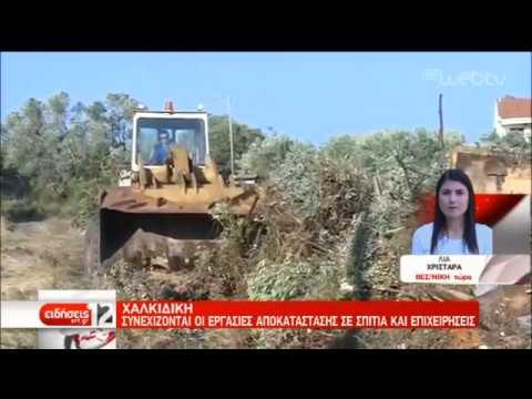 Συνεχίζονται οι εργασίες αποκατάστασης σε σπίτια και επιχειρήσεις στη Χαλκιδική | 15/07/2019 | ΕΡΤ