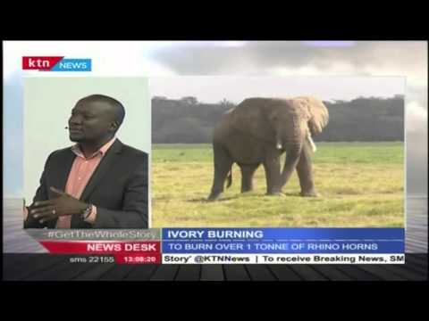 DENNIS ONSARIGO; Why its still very difficult to eradicate poaching in Kenya