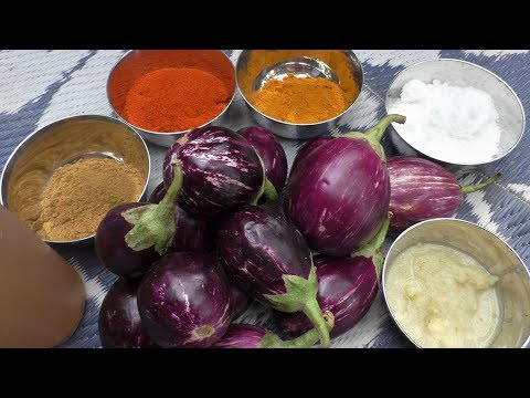 village style outdoor Cooking Brinjal fry Recipe / Cooking By Village food Recipes