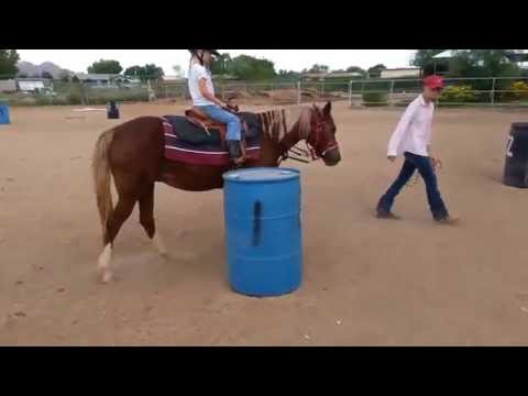 Kings Victory Farms,..6 year old Students riding Butterfly Girl and Zoomie.