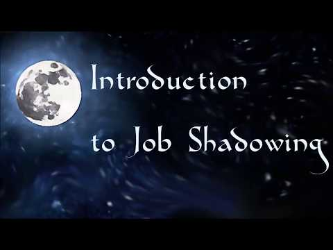 Introduction To Job Shadowing - A Brief Teaser