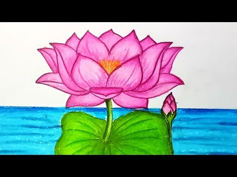 How To Draw A Lotus In Easy Steps Mp3 Download Naijaloyal