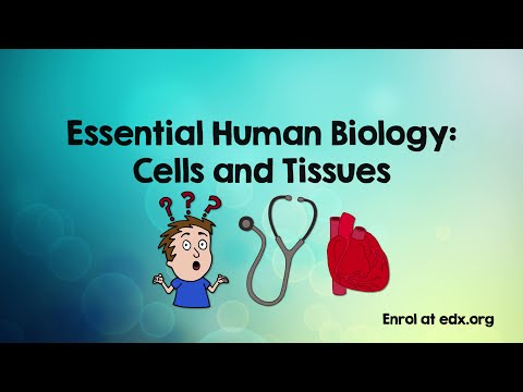 Essential Human Biology: Cells & Tissues (free Course)