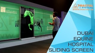 Dubai Equine Hospital - Horse Sliding Screen