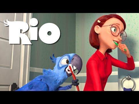 Blue and Linda's morning - RIO (1080p)