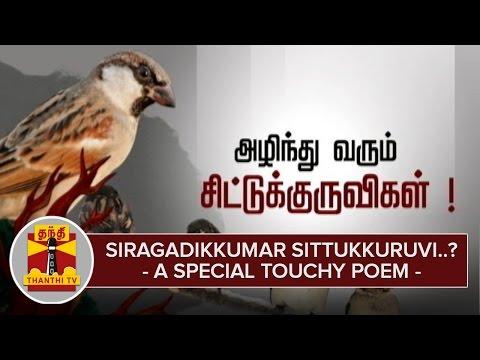 Siragadikkuma-Sittukkuruvi-A-Special-Touchy-Poem-about-Sparrow--Thanthi-TV