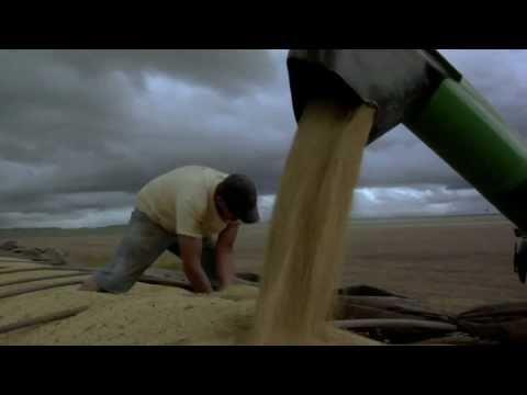 Mister Kitchen werkte mee aan en figureert in een bijzondere documentaire over de (on)duurzaamheid van ons dagelijks brood. In Smakelijk Eten!