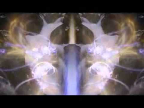 Max Igan-Sovereignity Through Trust Law & Non Compliance 2-4