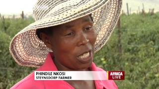 Woolworths Partners With Small Scale Farmers In South Africa