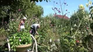 Mijn Mooie Tuin met Alie Lebbink