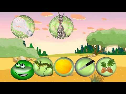 Розвиваючі ігри-вікторини для дітей 3-5 років...Дошкільні ігри
