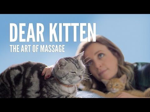 Dear Kitten, The Art of Massage